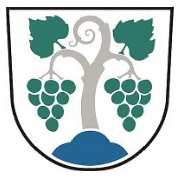 Občina Vipava Grb